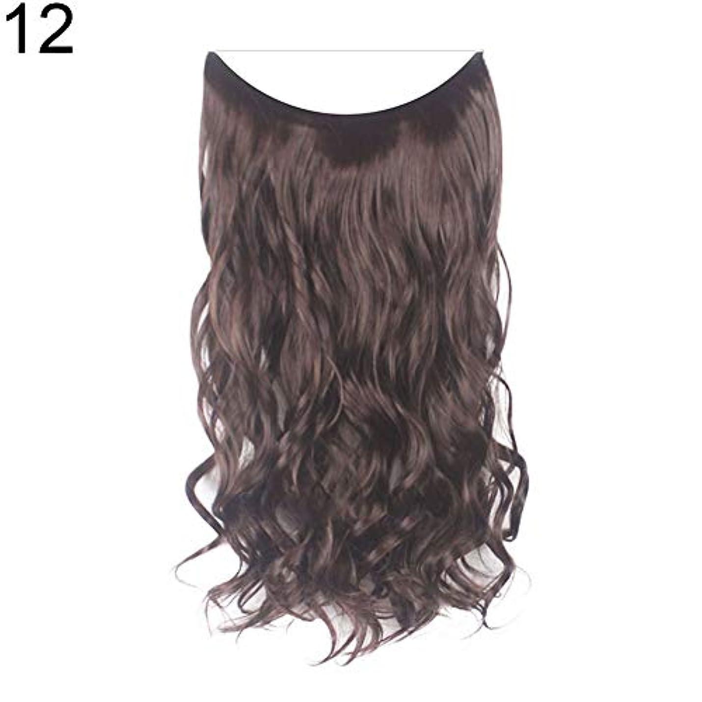 簿記係ディーラー提案するslQinjiansav女性ウィッグ収納コンテナ22インチ女性ロングストレート/カーリーワイヤーヘッドバンドウィッグ目に見えない髪の延長