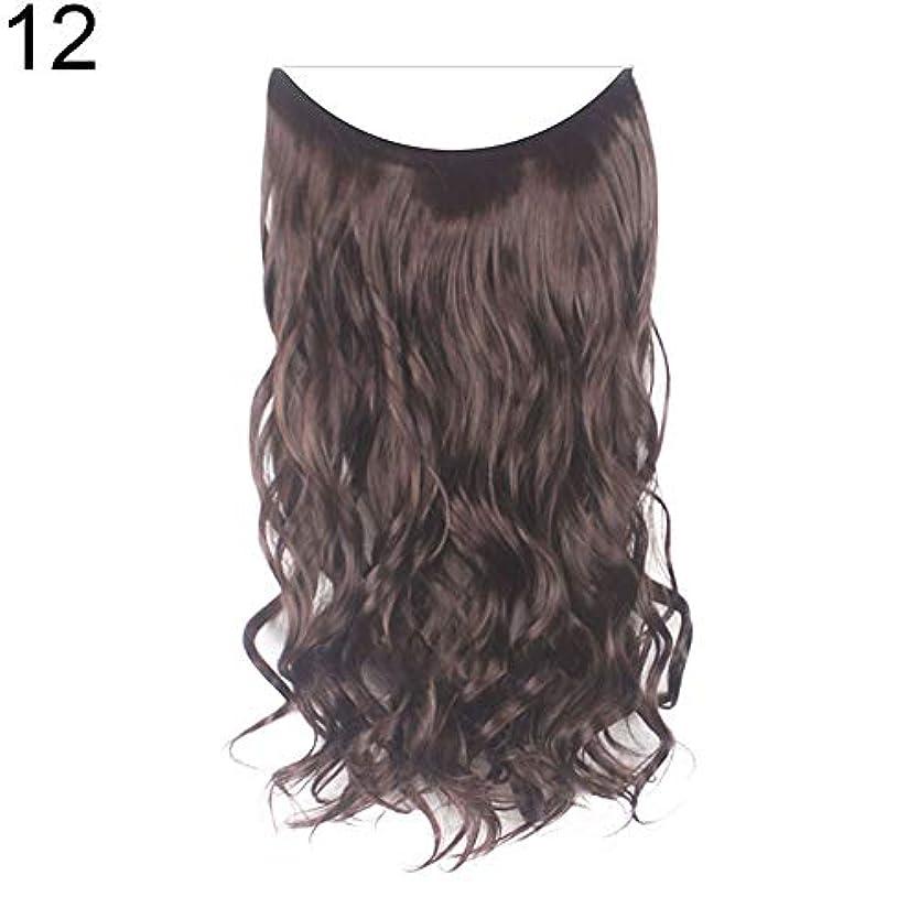 カトリック教徒風景はっきりしないslQinjiansav女性ウィッグ収納コンテナ22インチ女性ロングストレート/カーリーワイヤーヘッドバンドウィッグ目に見えない髪の延長