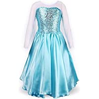 DaHeng Little Girl's Princess Elsa Fancy Dress Costume