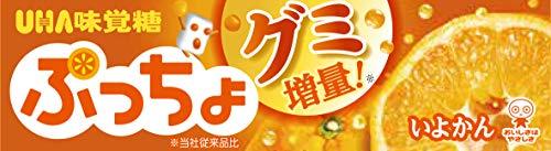 UHA味覚糖 ぷっちょ いよかん スティック ×10個
