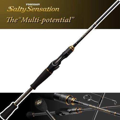 エバーグリーン ソルティセンセーション PSSC-70S マルチポテンシャル