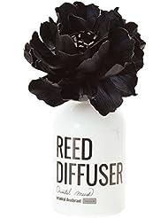 ノルコーポレーション リードディフューザー オーブフレッシュ オリエンタルムスクの香り 80ml OA-AFE-4-1