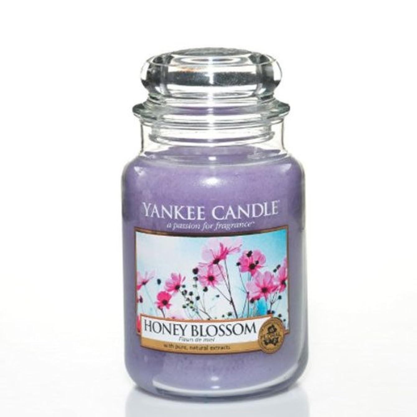 間デッキペインギリックYankeeキャンドルLarge Jar Candle – Honey Blossom