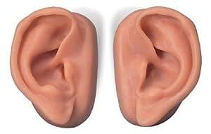 3B社 鍼灸シミュレータ 耳鍼モデル2個セット(n15)