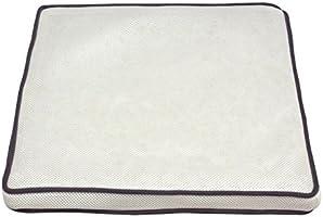 アイリスオーヤマ エアリークッション 通気性抜群 ホワイト CAR-4343