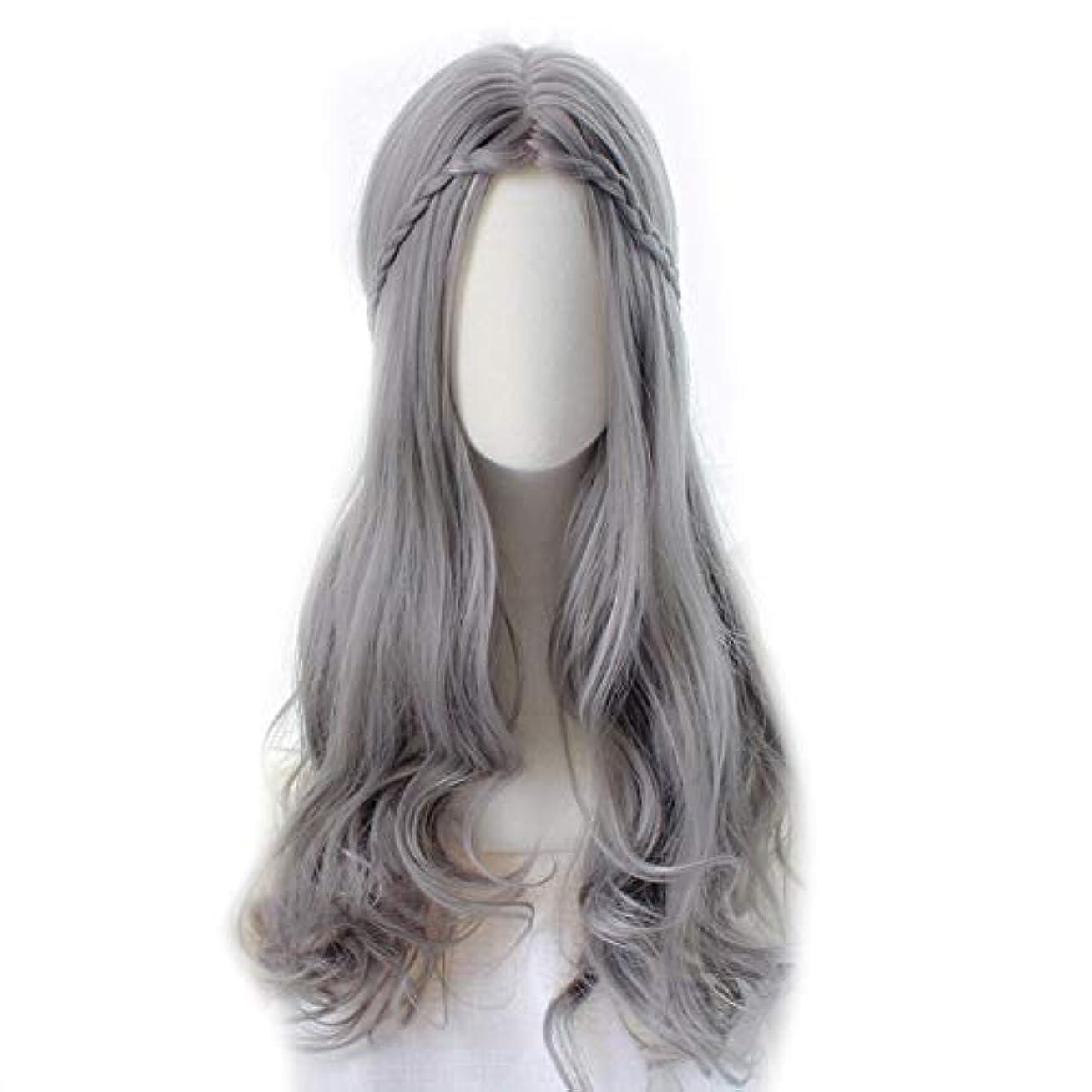 彼らまたはどちらか更新WASAIO 女性のロリータシルバーグレーウィッグロングカーリーヘアウィッグアクセサリー用スタイルReplacementfor女の子合成コスプレパーティーと前髪 (色 : Silver grey, サイズ : 55cm)
