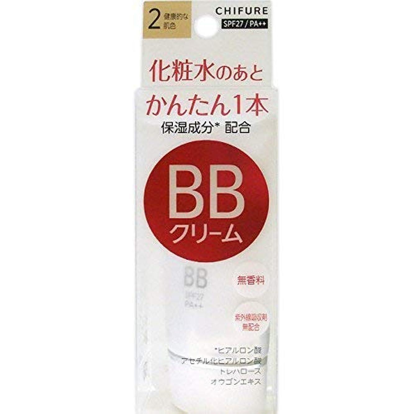 見かけ上ストラップ簡潔なちふれ化粧品 BB クリーム 2 健康的な肌色 BBクリーム 2