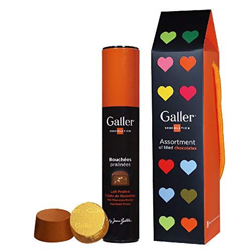 【Galler(ガレー)ベルギー王室御用達 チョコレート 】コラムプラリネミルク 9個入り