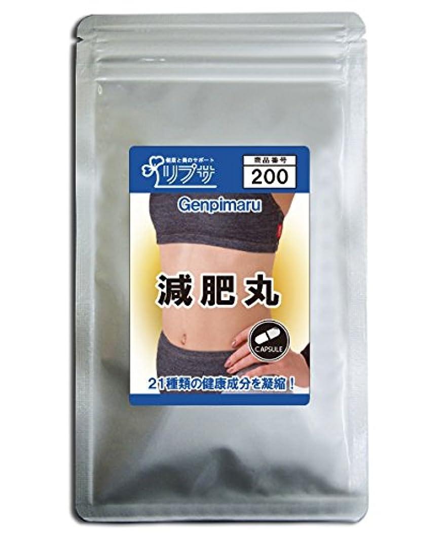掃く風刺ベジタリアン減肥丸 約3か月分 C-200
