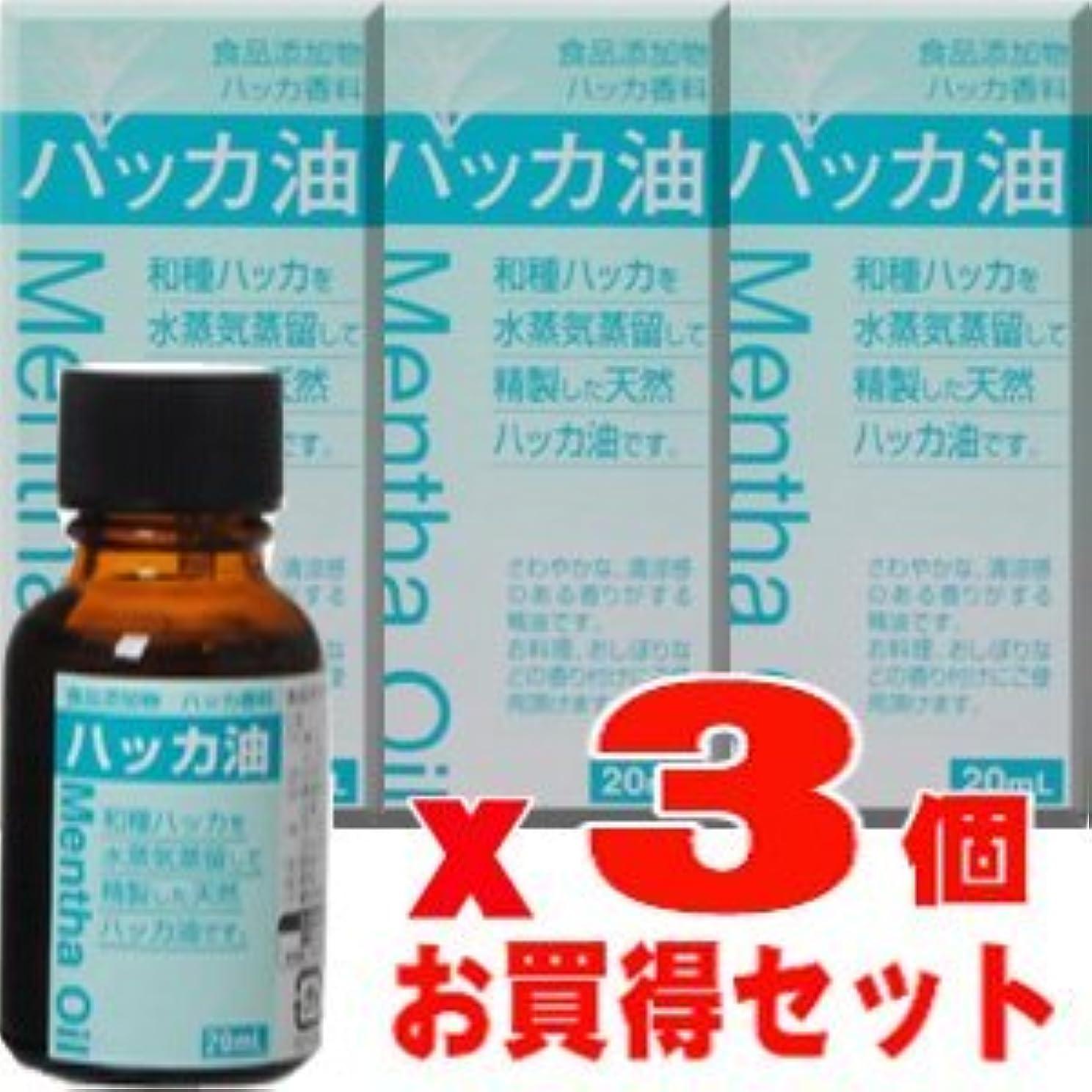ヘビペチュランスリズム食品添加物 ハッカ油 20mLx3個