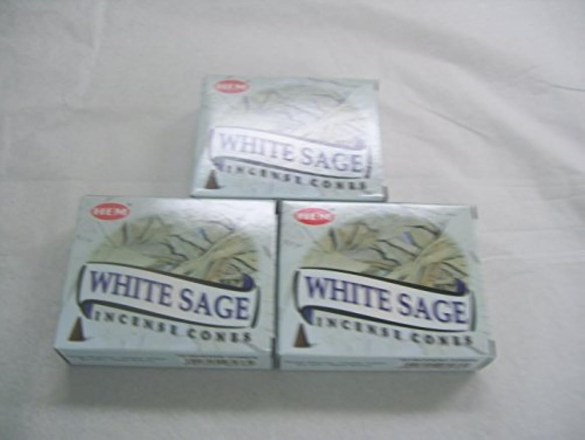 ヘビ髄エラーHemホワイトセージ香コーン、3パックの10 Cones = 30 Cones