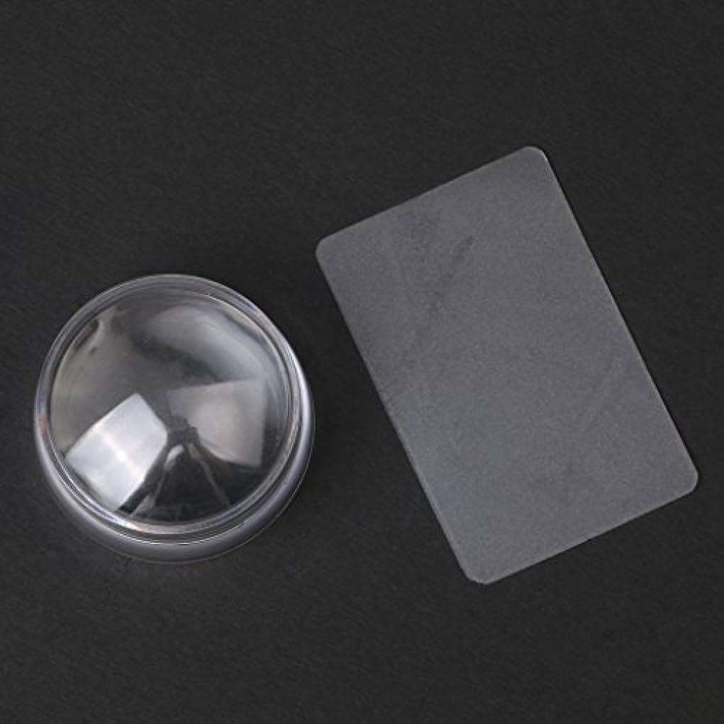 適切に火スカーフCUTICATE 2个ネイルアートスタンプスタンパ掻きスクレーパーツールは透明に設定します