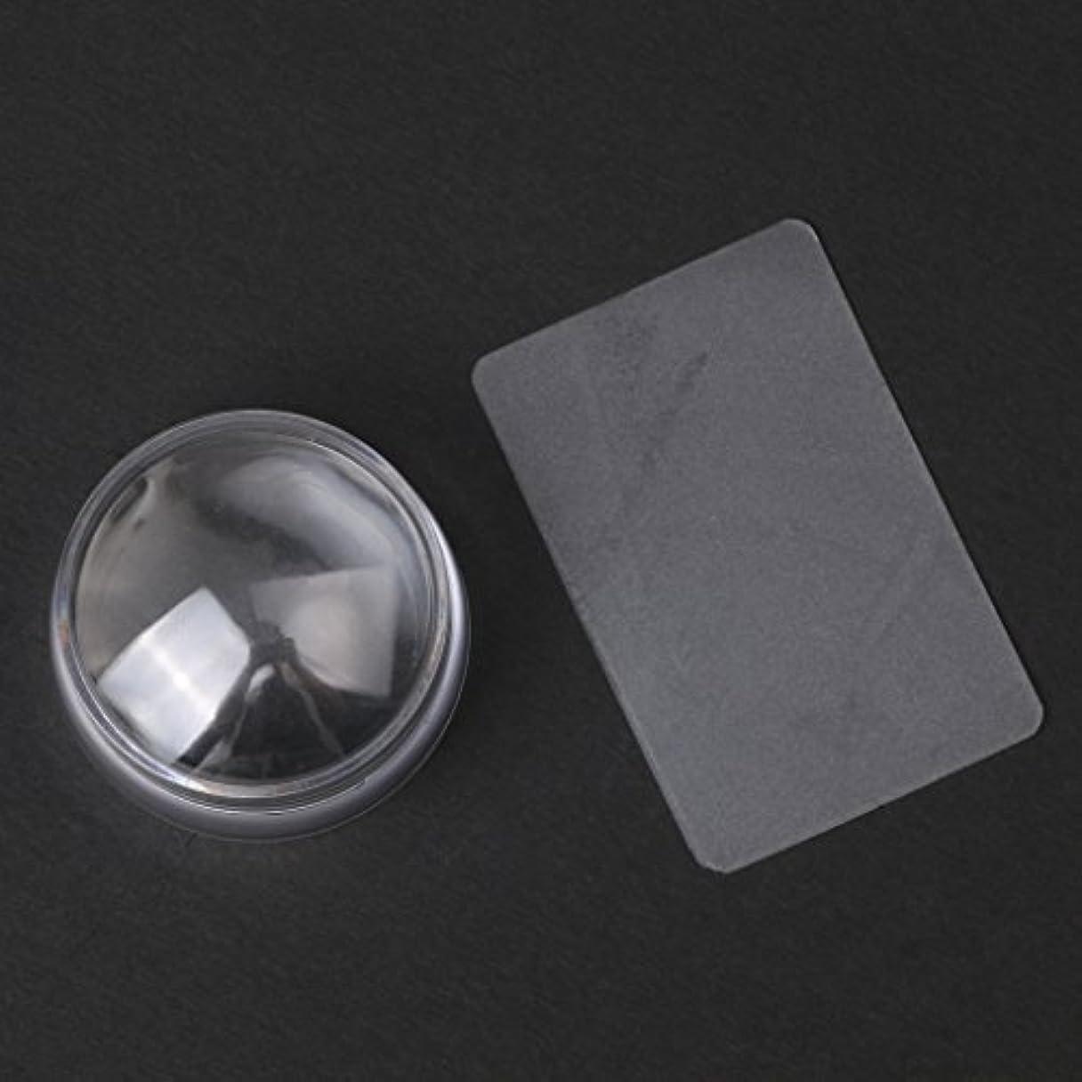 不条理講堂忠実にCUTICATE 2个ネイルアートスタンプスタンパ掻きスクレーパーツールは透明に設定します