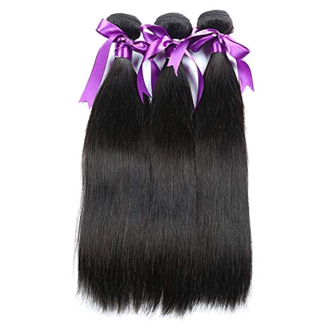 精査定義ペアかつら 髪マレーシアストレートヘア3個人間の髪の束非レミーの毛延長8-28インチボディヘアウィッグ (Length : 12 14 16)