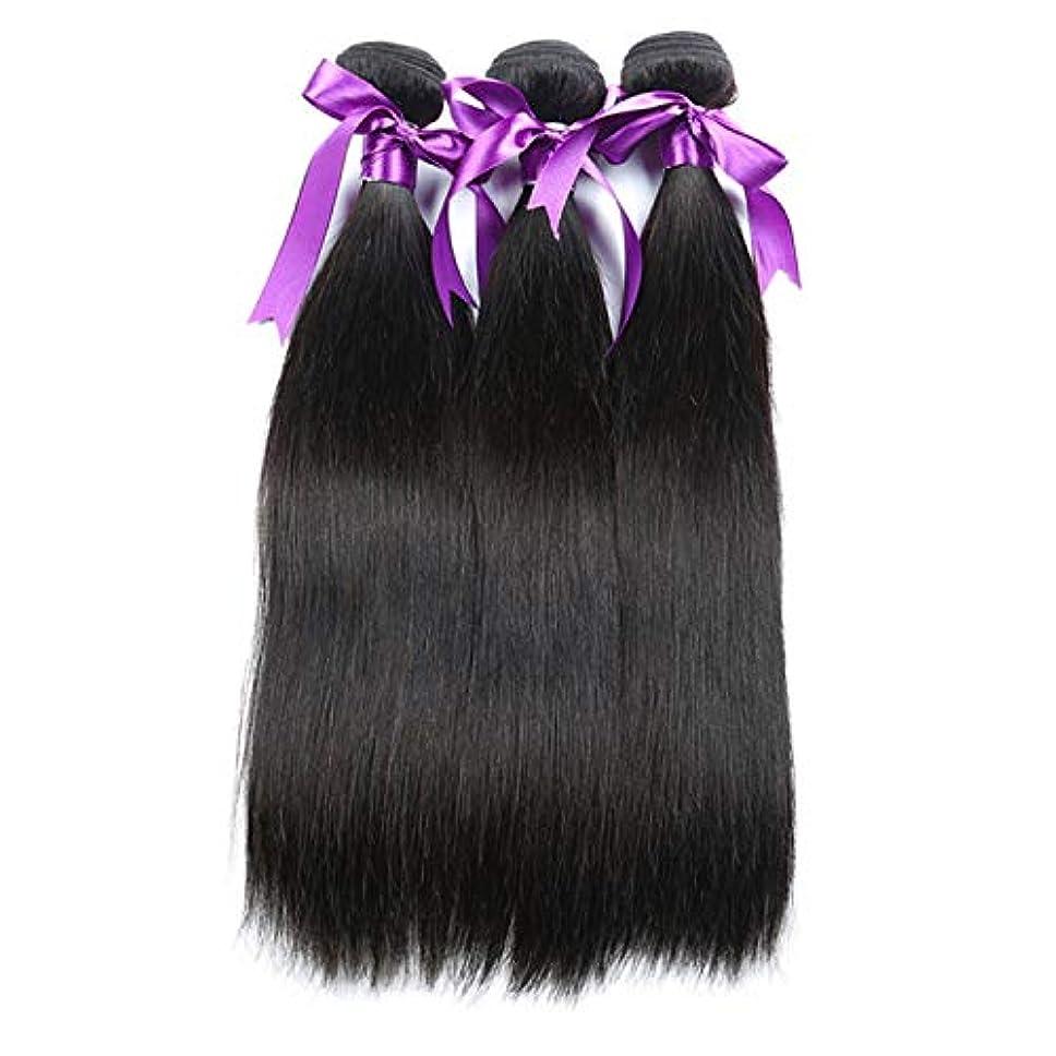 防腐剤エジプト人政治かつら ペルーのストレートヘア織り3バンドル/ロット100%人のRemyの髪横糸8-28インチボディヘアエクステンション (Stretched Length : 14 16 18)