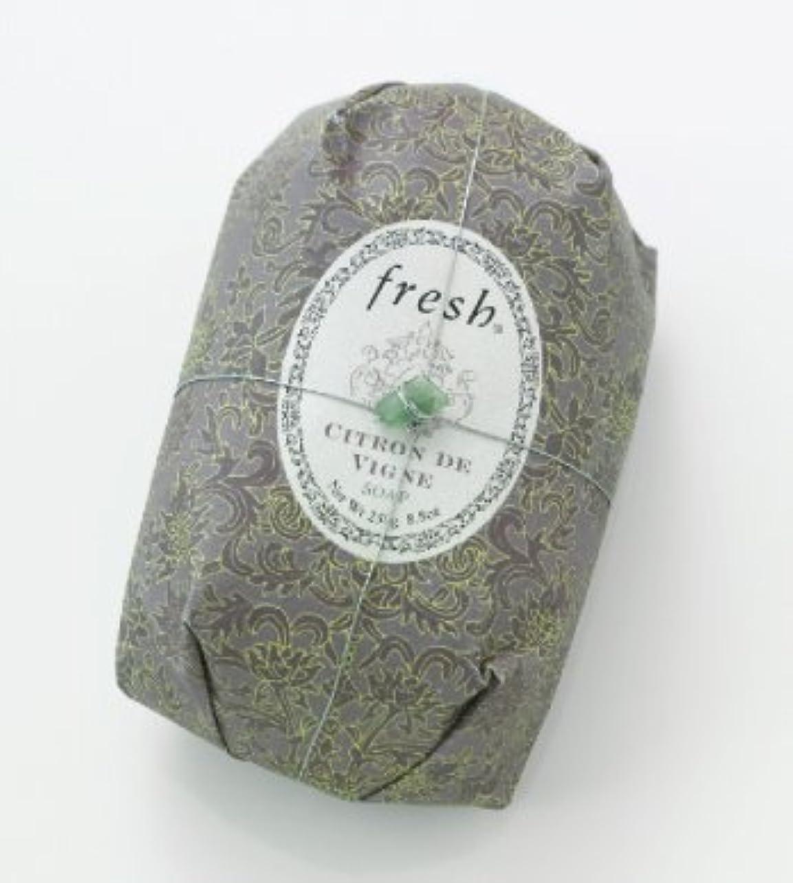 ごみ線形噛むFresh CITRON DE VIGNE SOAP (フレッシュ シトロンデヴァイン ソープ) 8.8 oz (250g) Soap (石鹸) by Fresh