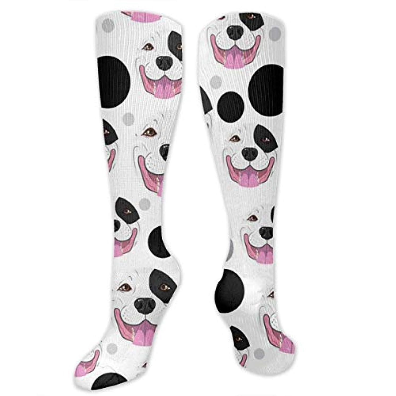 散歩寝室時系列qrriyプードルパターン- 3 D抗菌アスレチックソックス圧縮靴下クルーソックスロングスポーツ膝ハイソックス少年少女キッズ幼児