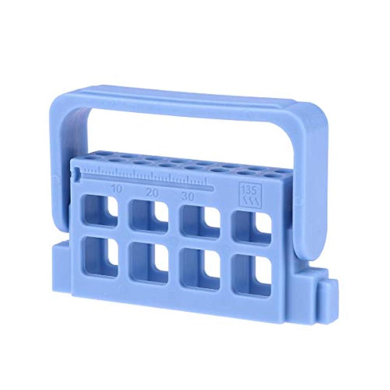 電気毒反応するHEALLILY 歯科用測定ファイルホルダー口腔根管洗浄スタンド付き測定スケール臨床用具(青)