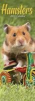 Hamsters Slim Calendar 2020