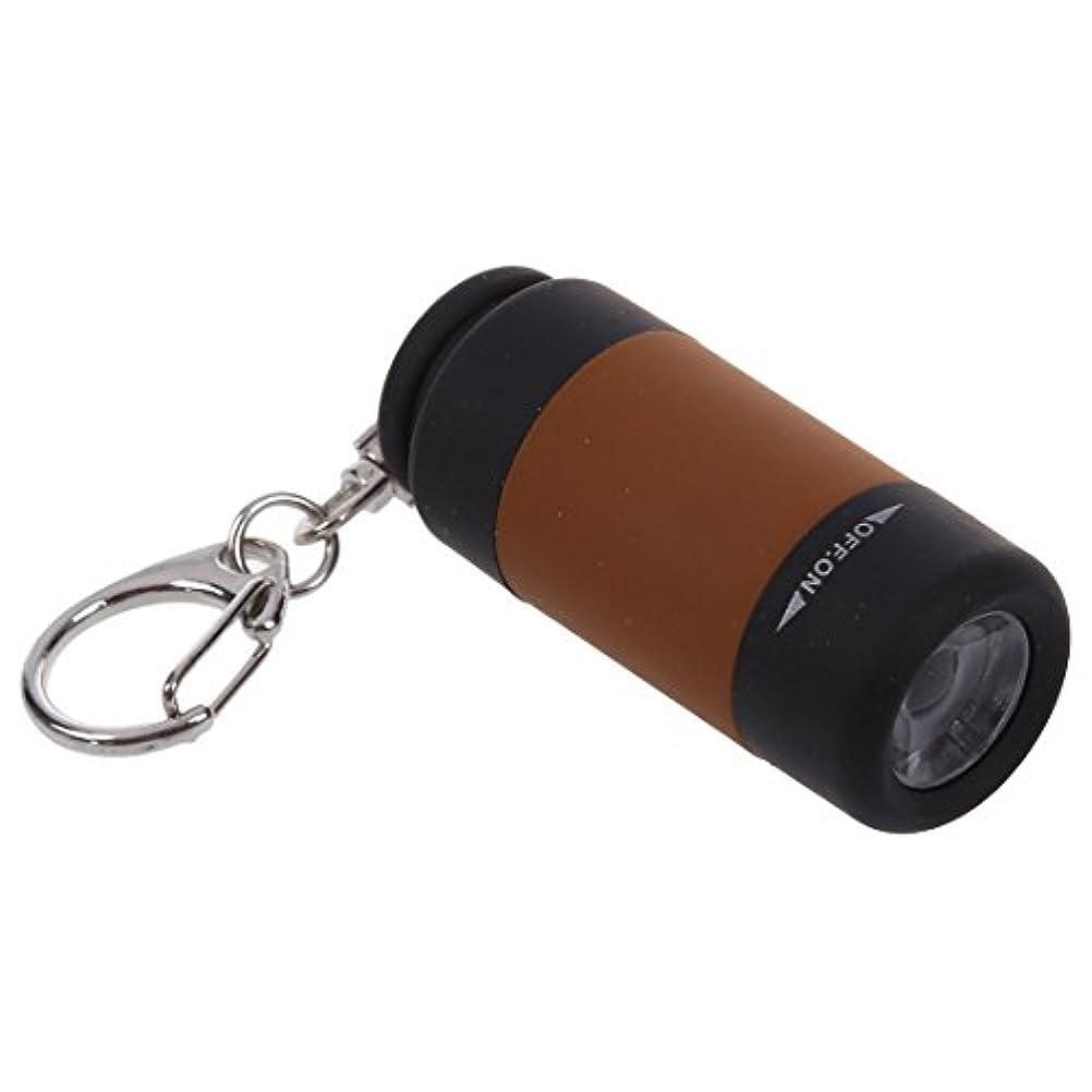 分岐する明示的にスリラーキーチェーンリング,SODIAL(R)2X携帯型充電式 USB ミニLED トーチランプライト懐中電灯キーチェーンリング