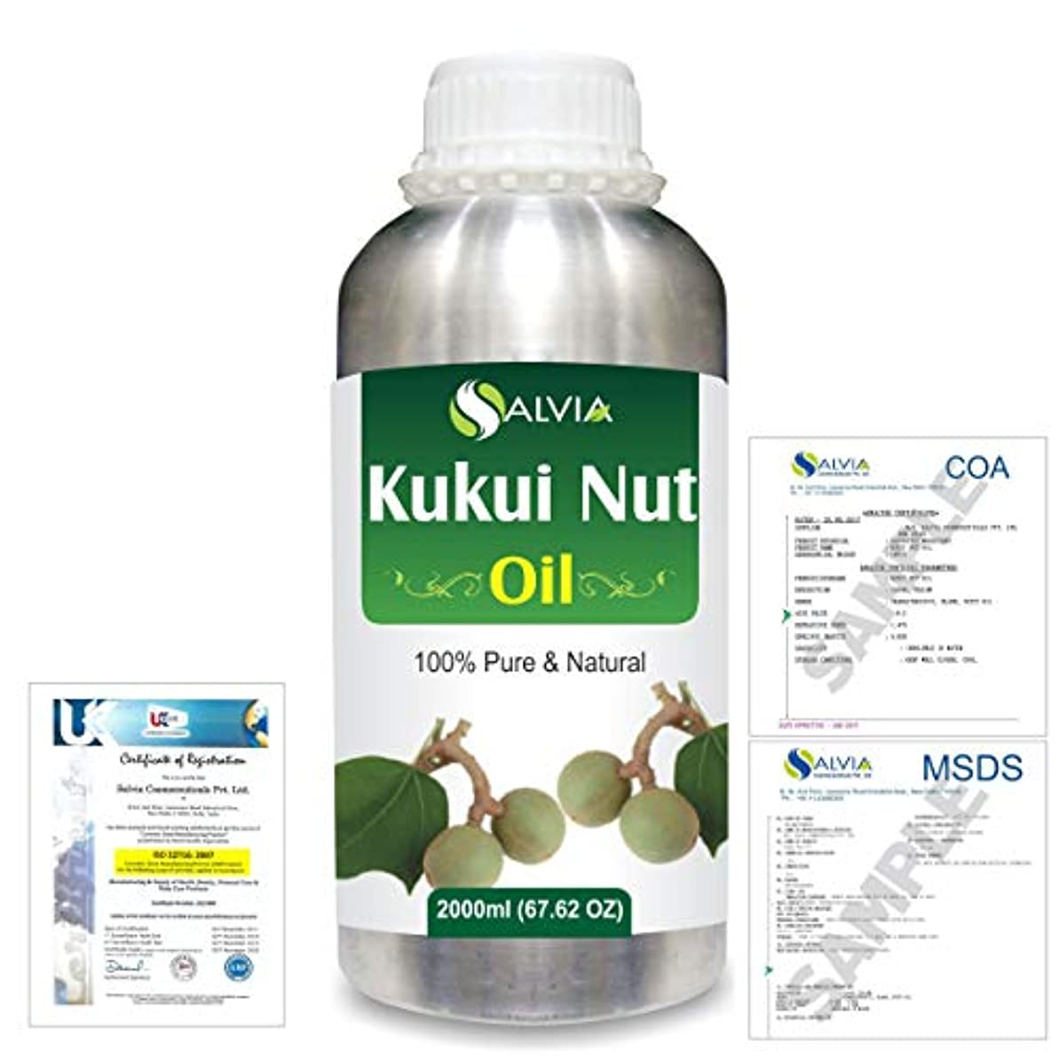 胚芽気がついてしおれたKukui Nut (Aleurites Moluccans) Natural Pure Undiluted Uncut Carrier Oil 2000ml/67 fl.oz.