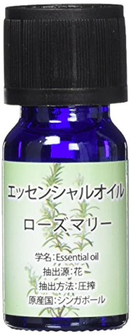 ワンダービュッフェ瞑想的エッセンシャルオイル(天然水溶性) 2個セット ローズマリー?WJ-727