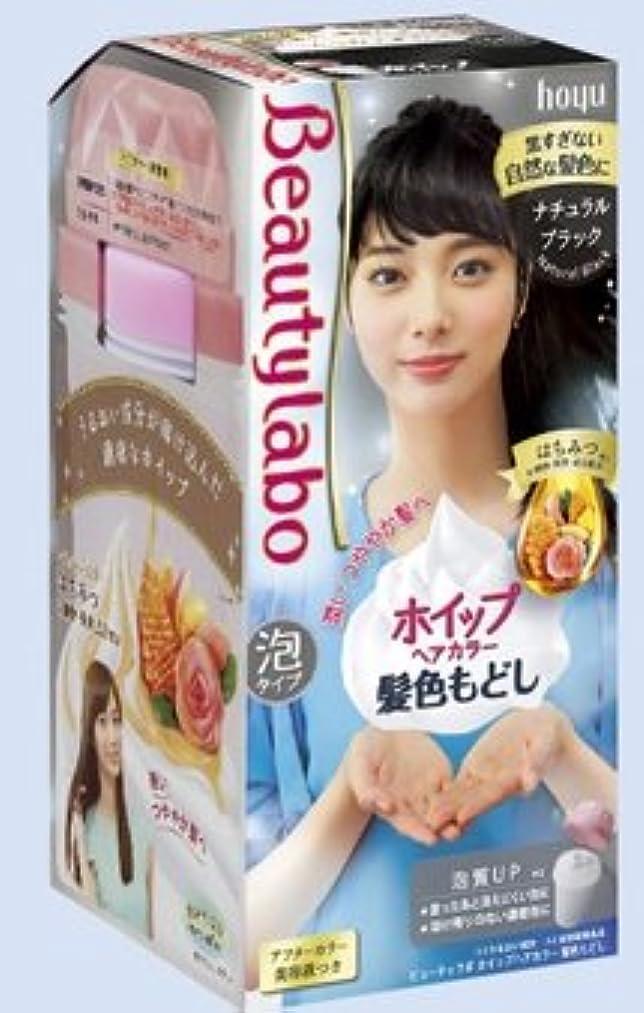 塩オンス教育BeautyLabo(ビューティラボ) ホイップヘアカラー 髪色もどし ナチュラルブラック × 3個セット