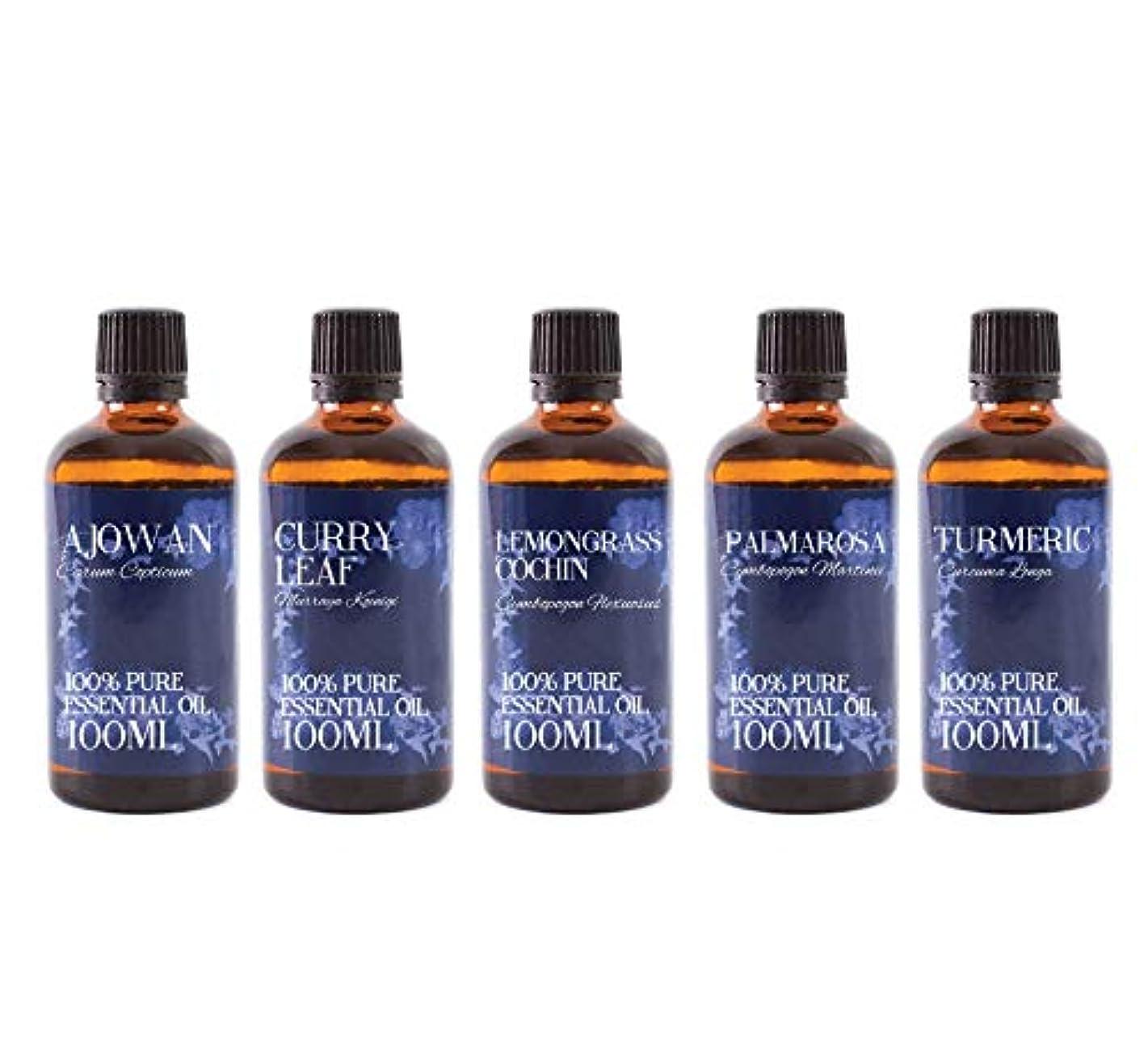 木製負敵対的Mystic Moments | Gift Starter Pack of 5 x 100ml Essential Oils Of India
