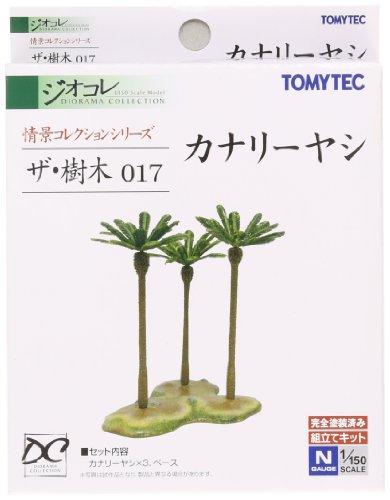 ザ・樹木017 カナリーヤシ