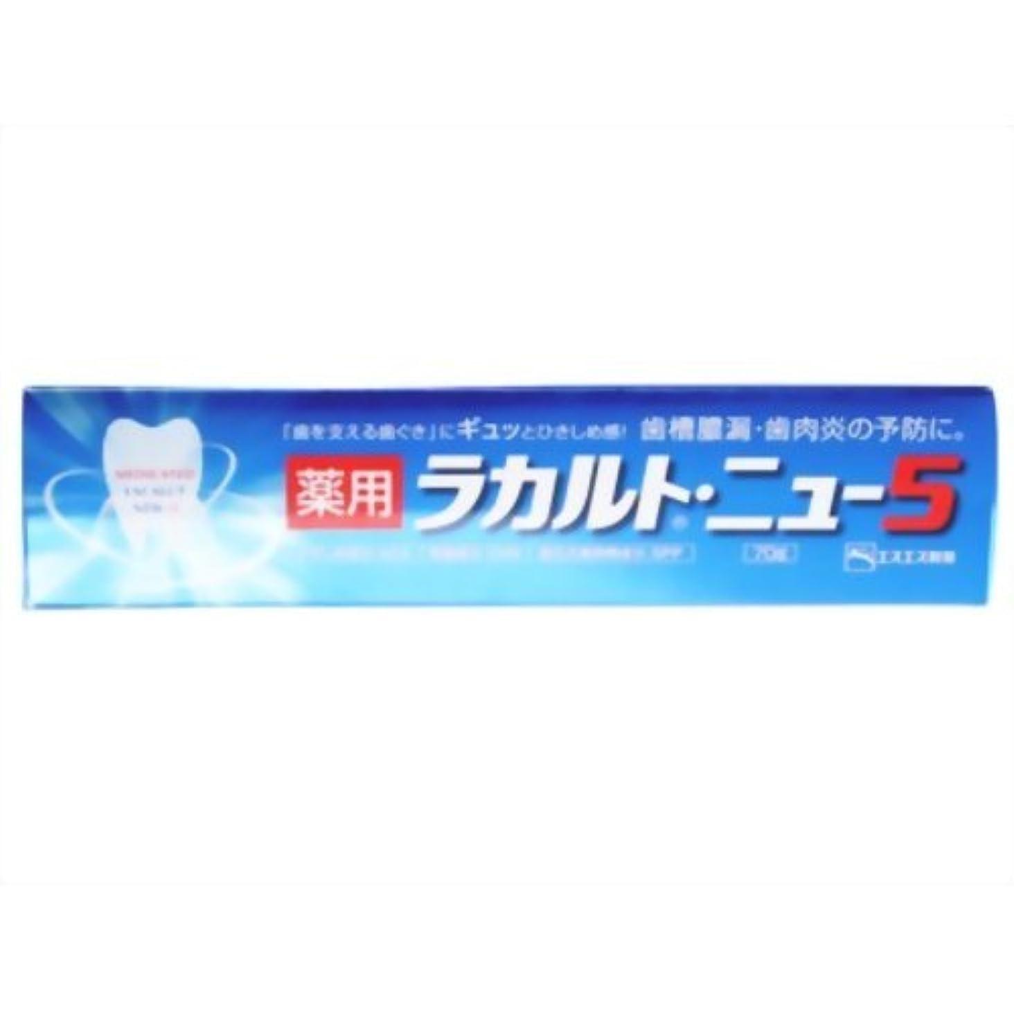 類似性カートンヒューム【エスエス製薬】薬用ラカルト・ニュー5 70g ×3個セット
