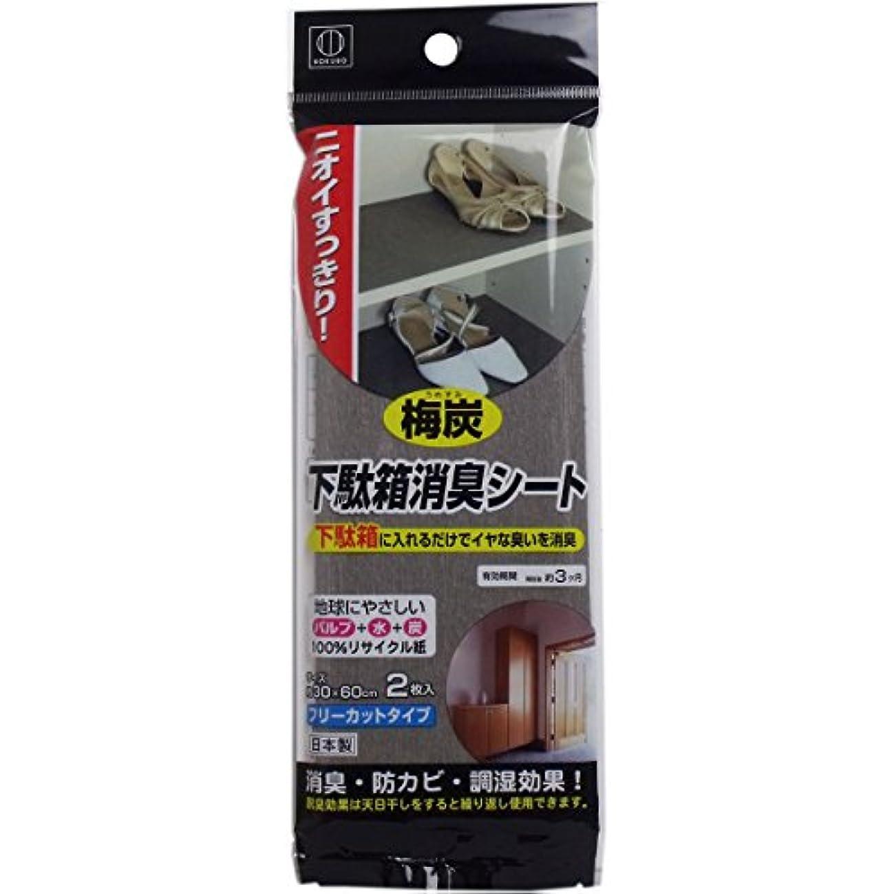 結晶アラブ人含む日本製 japan 3662 梅炭下駄箱消臭シート2枚入り 【まとめ買い10個セット】