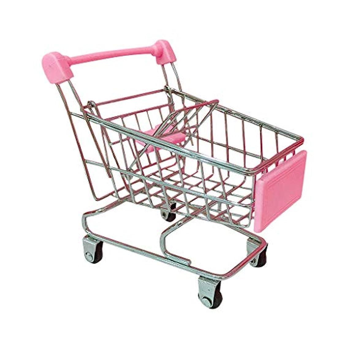 大邸宅食品リサイクルするショッピングカート プレイセット キッチンヘビーゲージスチール玩具 子供用 おままごと セット おもちゃ お店屋さんごっこ 手押し車 (金属ステンレス, 11x7.8x12.5cm)