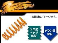 ZOOM 200kgf/mm^2 ダウンフォース 1台分 スズキ Kei ワークス HN22S K6A 2WD 2003年01月~