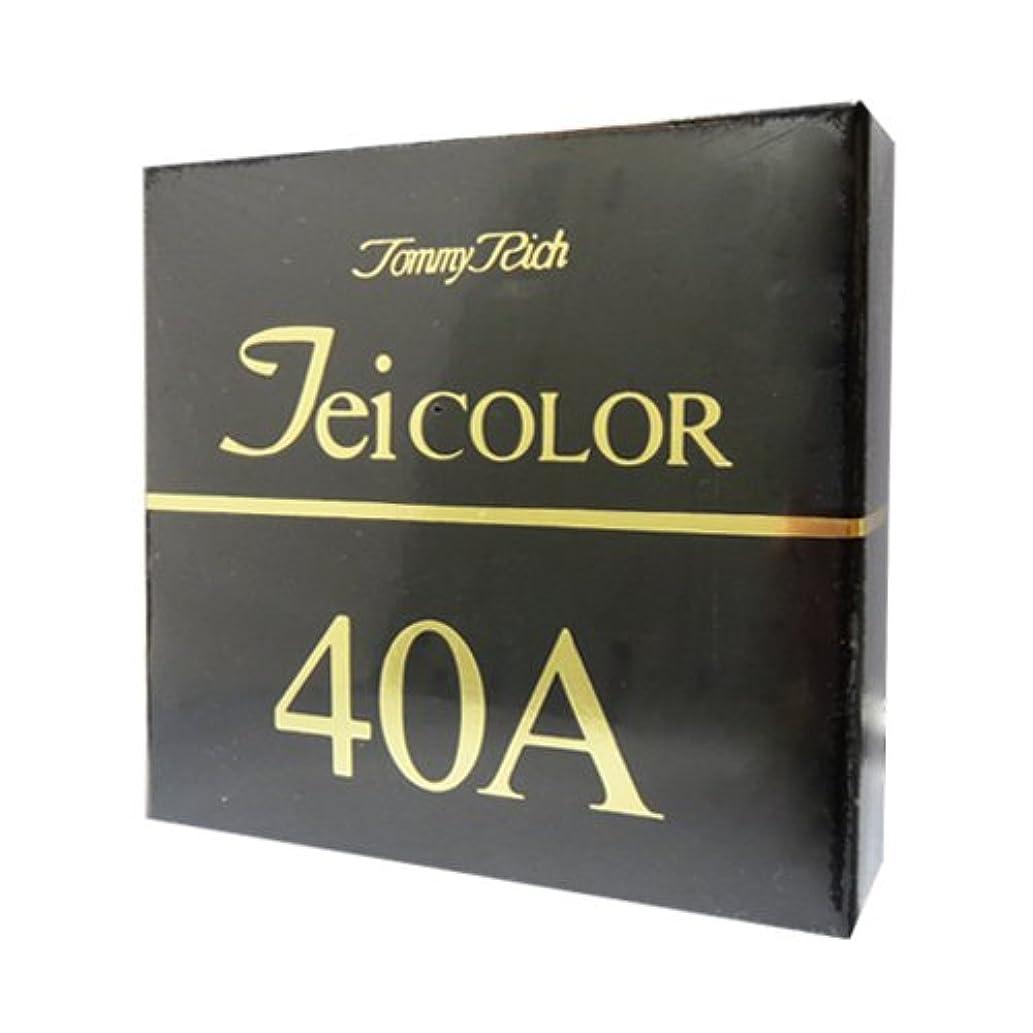 シェルター広告主誤解させるトミーリッチ TEIカラー 40A(普通肌用)