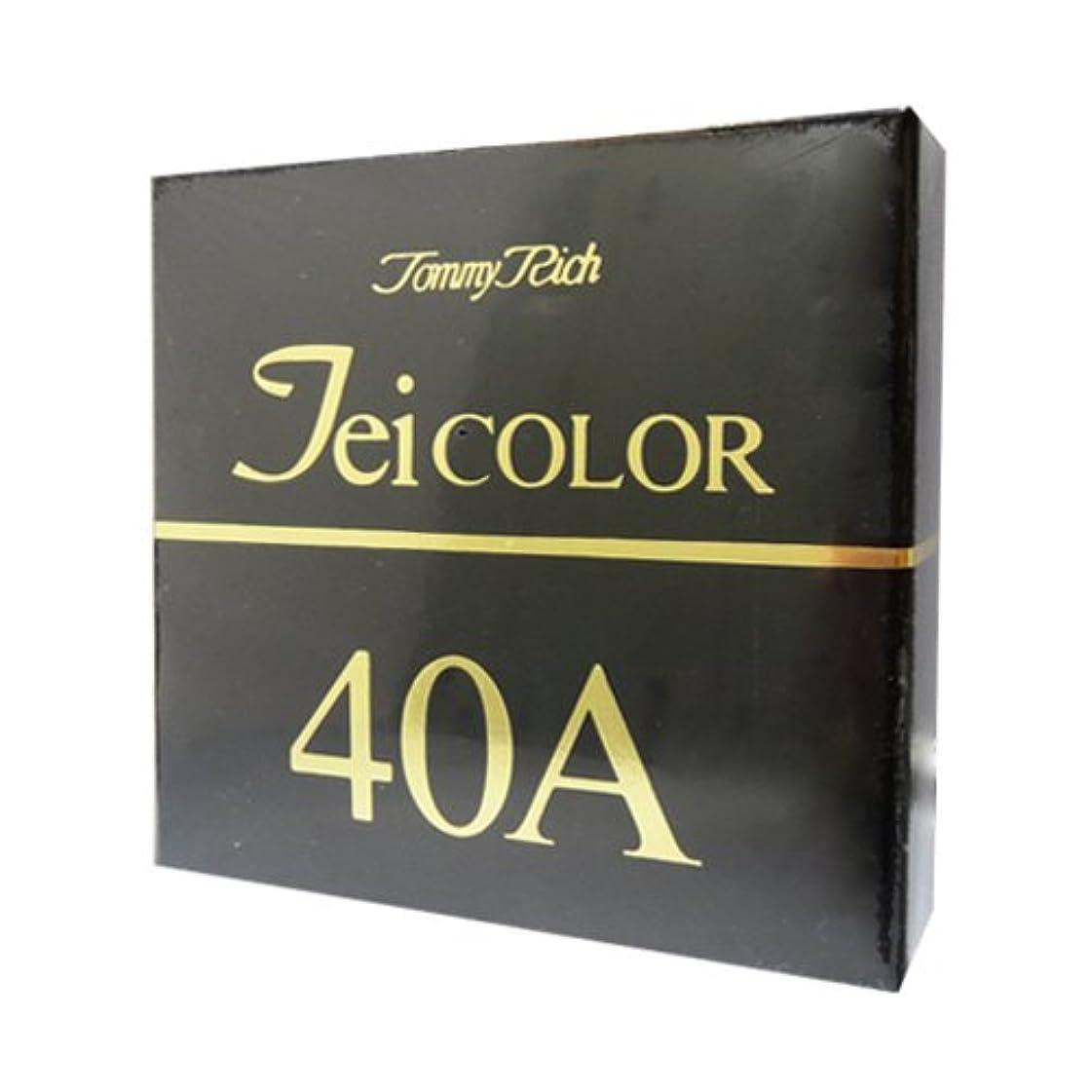 持続する広告主信仰トミーリッチ TEIカラー 40A(普通肌用)