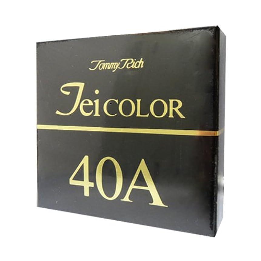 汚れるスキップまたはトミーリッチ TEIカラー 40A(普通肌用)