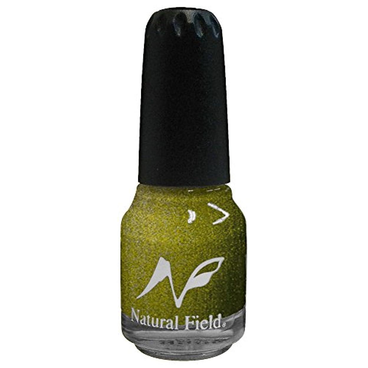 尋ねる温かい繁栄するNatural Field ネイルポリッシュ メタリックカラー 2099 M14 12ml