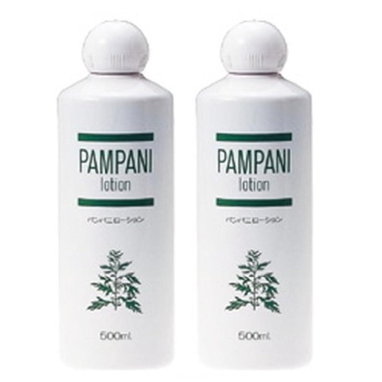 関連付けるレシピ流行しているパンパニ(PAMPANI) ローション500ml×2本組
