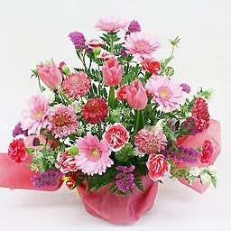 3月のアレンジ・グランデ 【毎月のお誕生花を使用したアレンジメント お誕生日・お祝いに】