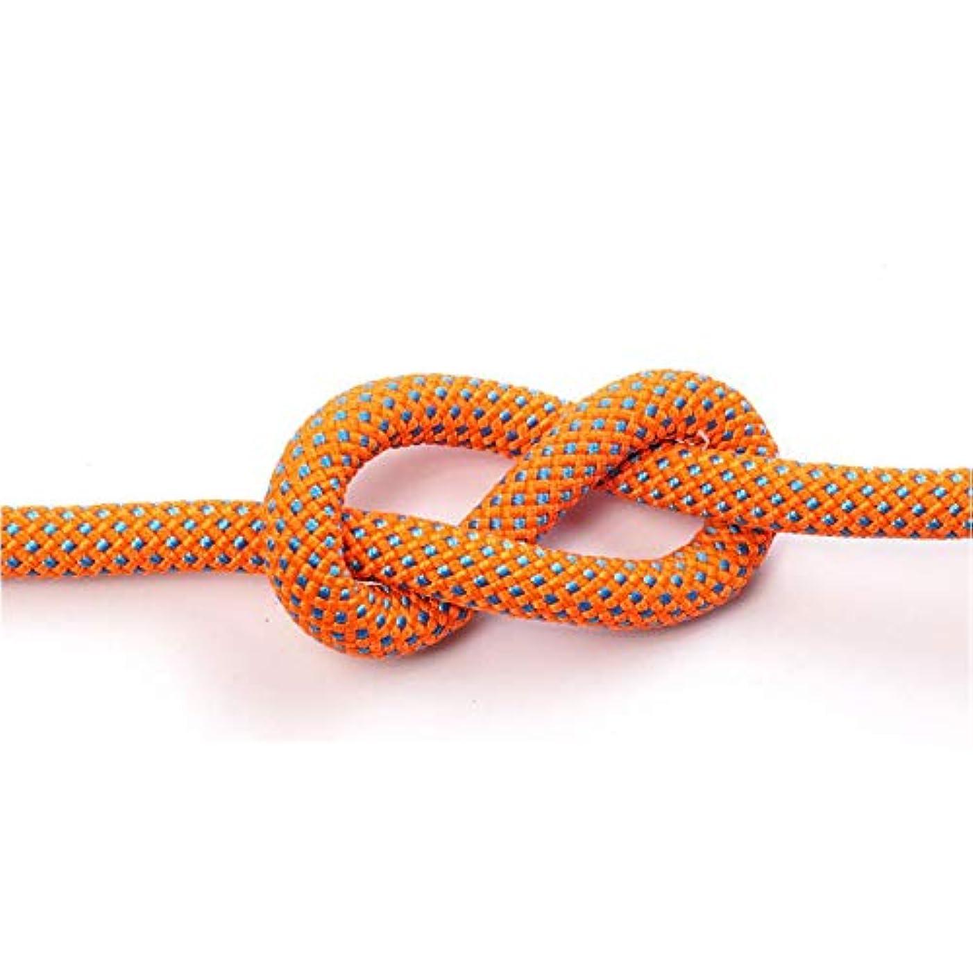 ウルル絶妙キャンペーン屋外ロープ、プロフェッショナルロッククライミング安全ロープ、12mmラペリングロープ安全ロープナイロンロープクライミング機器2つのフック、ハイキング (色 : オレンジ, サイズ : Diameter 8 mm/10M)