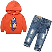Chumhey Baby Little Child Dinosaur Hooded Sweater Ripped Slim Jeans Pants Set
