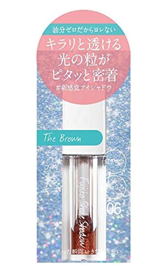 高い純粋にシャワーFujiko(フジコ) フジコ シェイクシャドウ 06 THE ブラウン 5g アイシャドウ THEブラウン