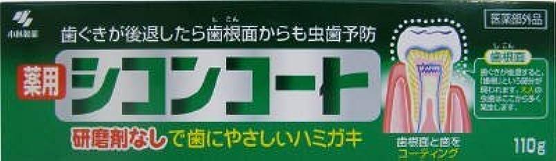 タクシー株式会社旅シコンコート × 10個セット