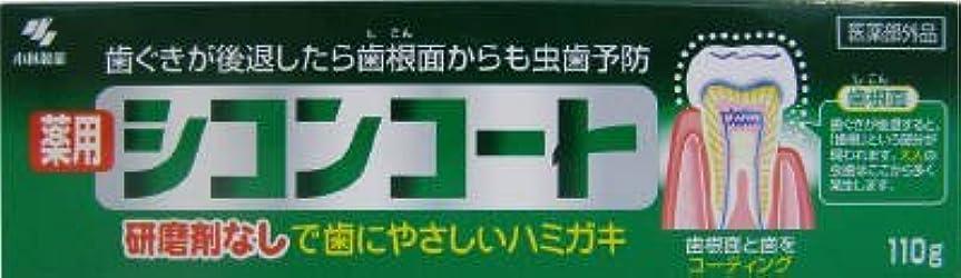 シコンコート × 5個セット