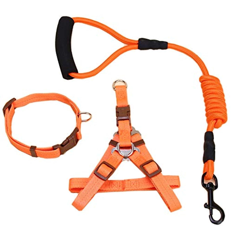 踏みつけ掻く薬局ペットリーシュ、犬の胸バックカラートラクションロープスリーピース (色 : Orange)