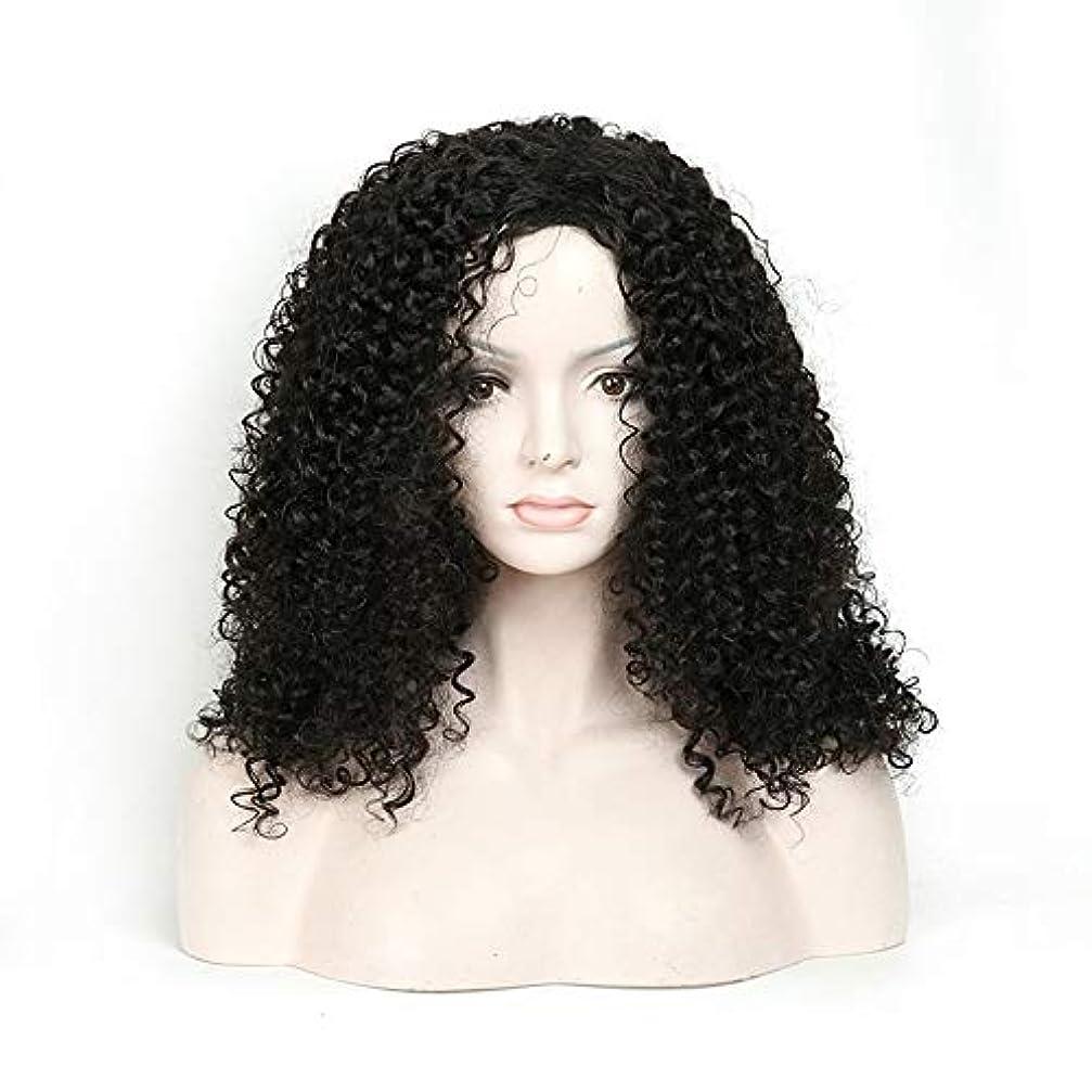 震えるホース頑丈WASAIO 人工毛アフリカンブラックロングカーリーウィッグ18インチ女性用日常ドレスアクセサリースタイル交換用繊維 (色 : 黒)