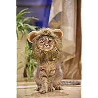 MEWTOGO-おしゃれ 猫用帽子 猫 かぶりもの らいおんたてがみ 猫 ぼうし コスプレキャップ ライオンに大変身 ペット用帽子 ペット用服 猫服 可愛さ100倍 耳付き 着脱簡単 マジックテープ付き-M