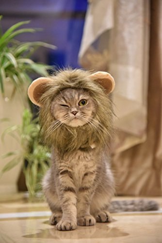 MEWTOGO-おしゃれ 猫用帽子 猫コスプレキャップ ライオンに大変身 ペット用 猫用帽子 可愛さ100倍 耳付き 着脱簡単 マジックテープ付き-S