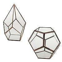 Blesiya アンティーク銅 幾何 ガラス容器 植物用 テーブルトップ 2個入り