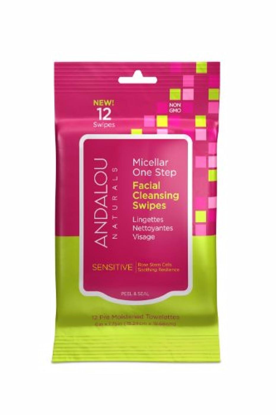 衣類ええ時系列オーガニック ボタニカル クレンジングシート 洗顔シート ナチュラル フルーツ幹細胞 「 Sミセラスワイプ 12枚入り 」 ANDALOU naturals アンダルー ナチュラルズ